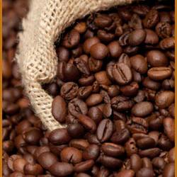 Cà phê CP13